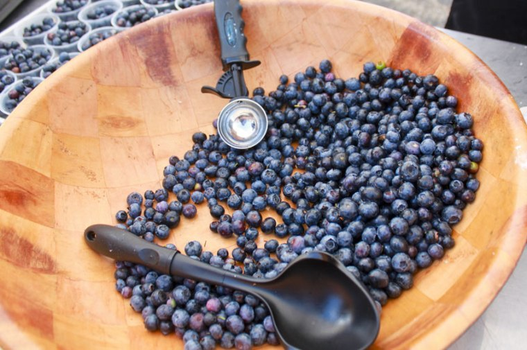 bowl-of-blueberries